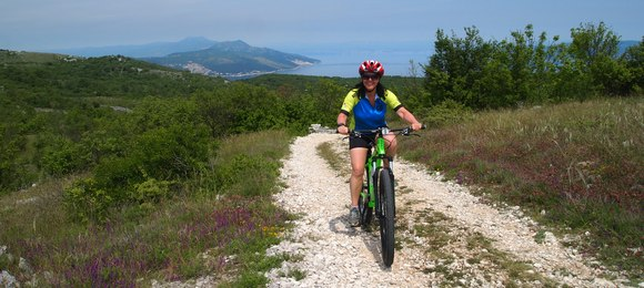 RHS new cycling holidays