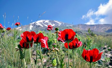 Mount Damavand and the Pearls of Persia