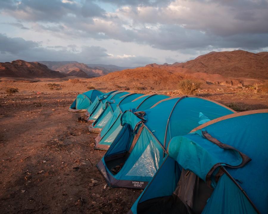 1d93542e0bf5 Dana to Petra
