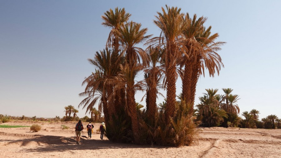 Edge Of The Sahara Trek Ke Adventure Travel