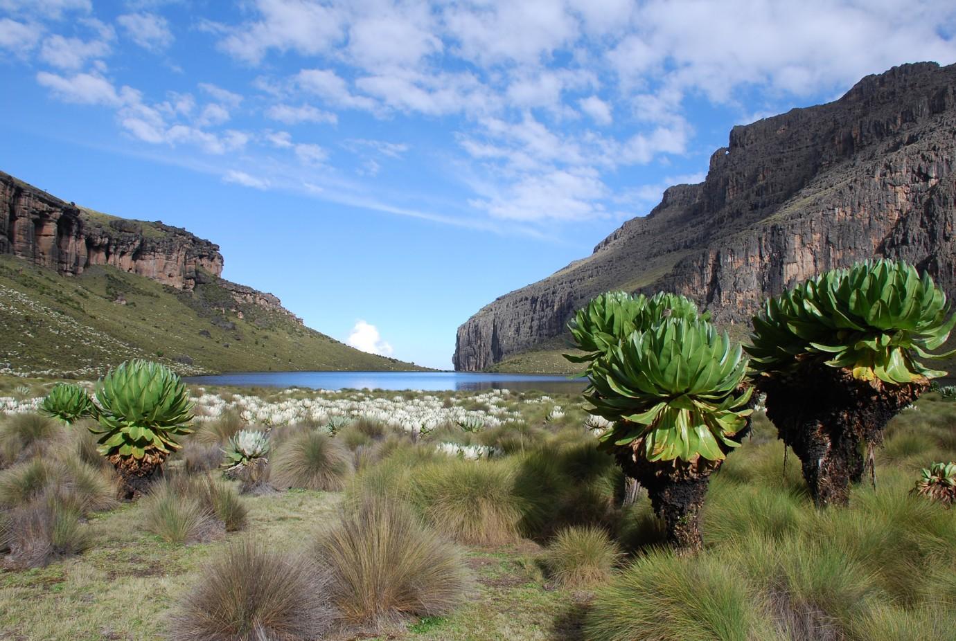 Mt Kenya Amp Kilimanjaro Ke Adventure Travel