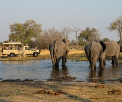Safari jeep at Chobe, Botswana