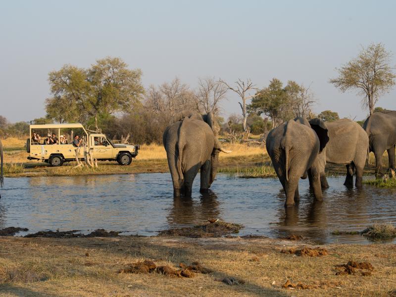 The Great Southern African Lodge Safari | Adventure Holiday 2021/2022 - KE  Adventure Travel
